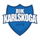 Карлскуга